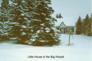 little-house-in-the-big-woods 4