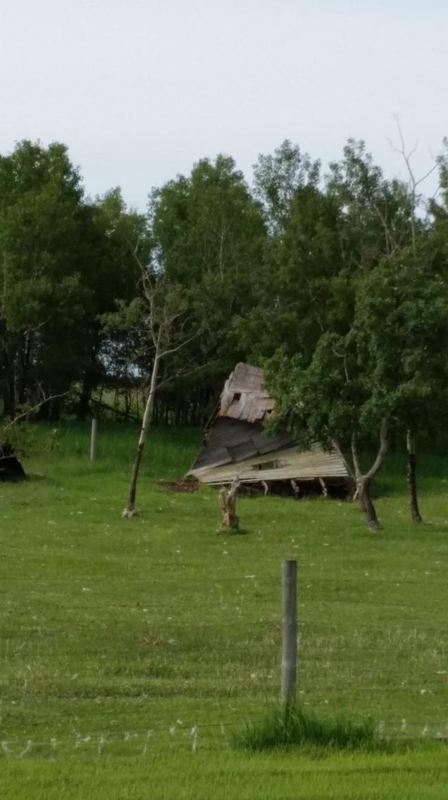 original sheep shed